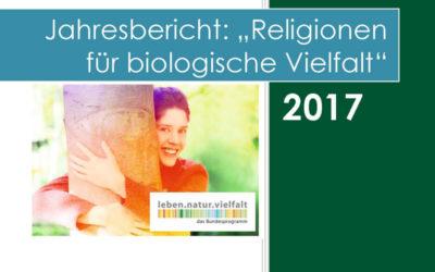 Unser Jahresbericht 2017 ist fertig!