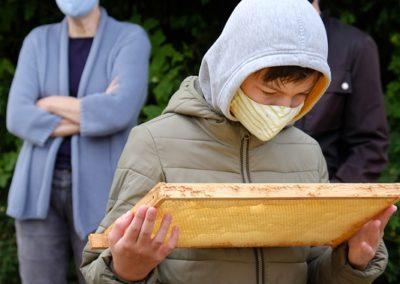 Junge mit Bienenwabe