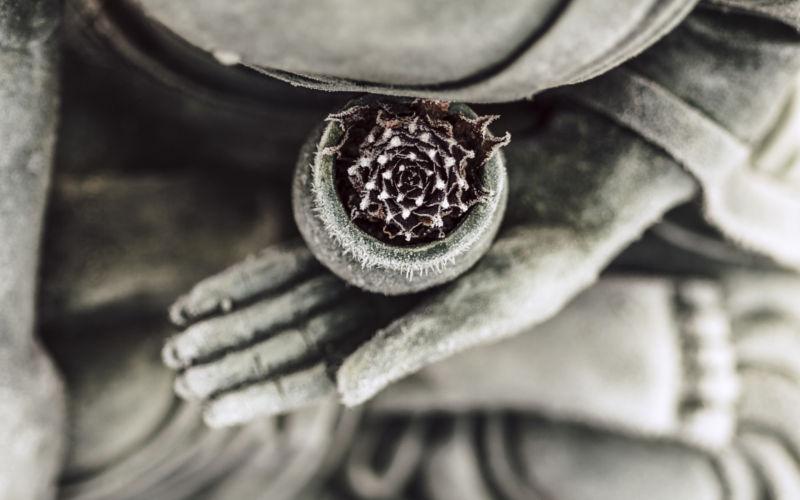 Osnabrück: Buddhistische Zen-Meditation