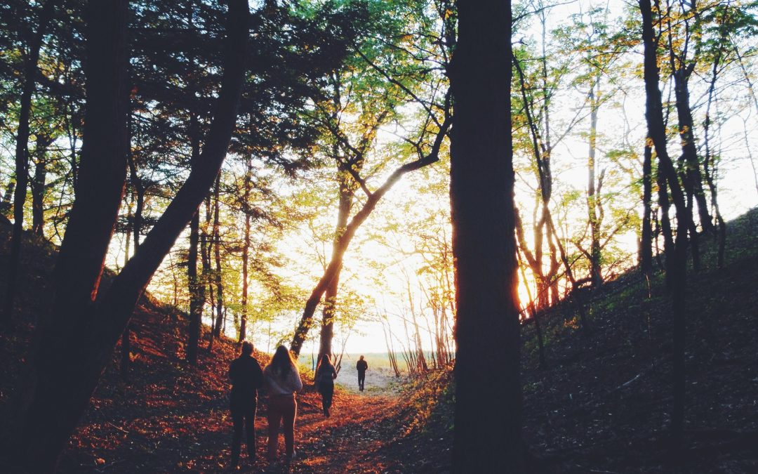 Köln: Spiritueller Abendspaziergang durch die Natur