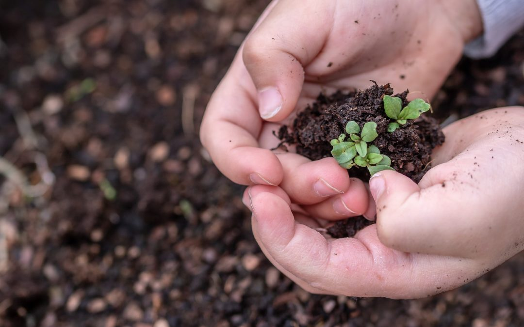 Köln: Ein offener Gesprächskreis: Wann fangen wir an ökologisch nachhaltig zu handeln?