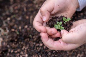 Köln: Ein offener Gesprächskreis: Wann fangen wir an ökologisch nachhaltig zu handeln? @ Christuskirche