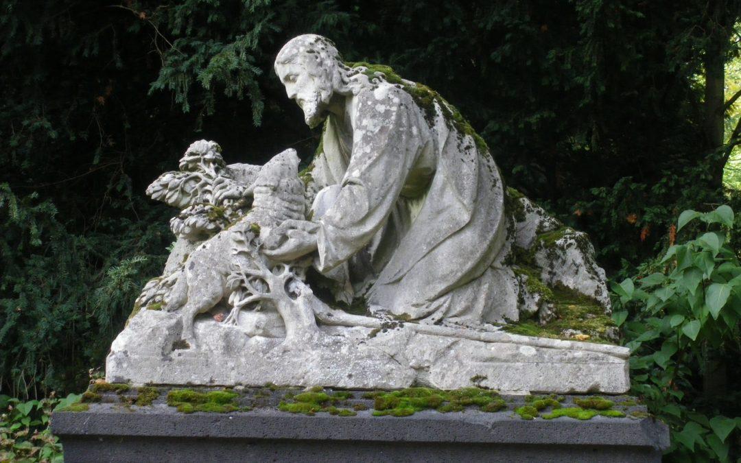 Köln: Gehmeditation auf dem Melatenfriedhof