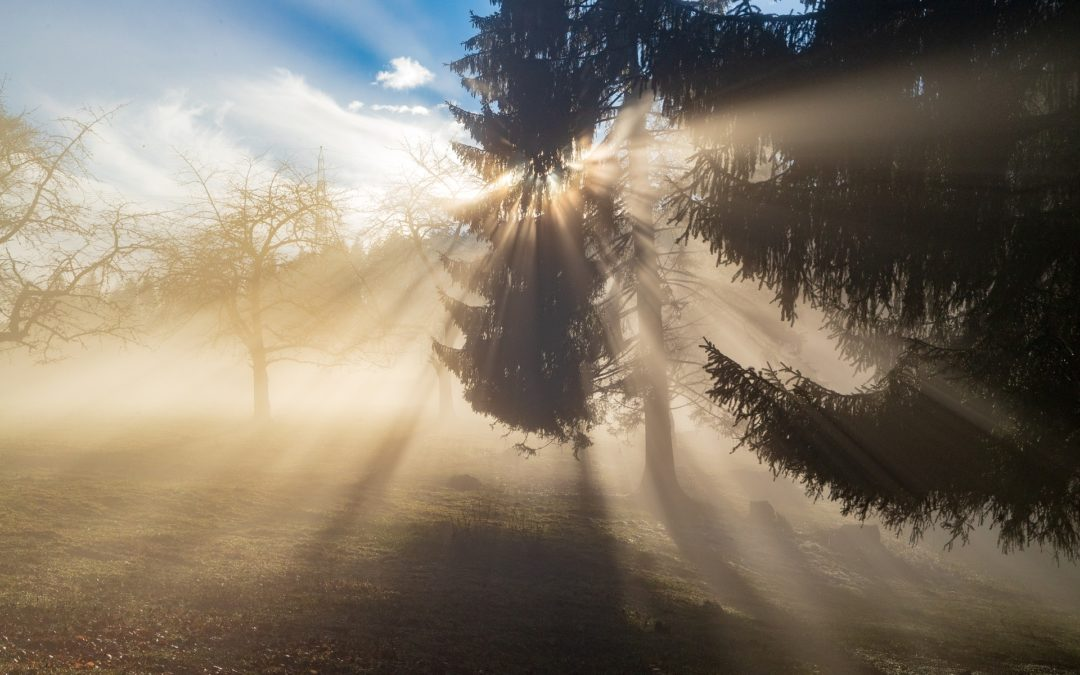 Roßdorf: Achtsamkeit üben / Achtsam sein