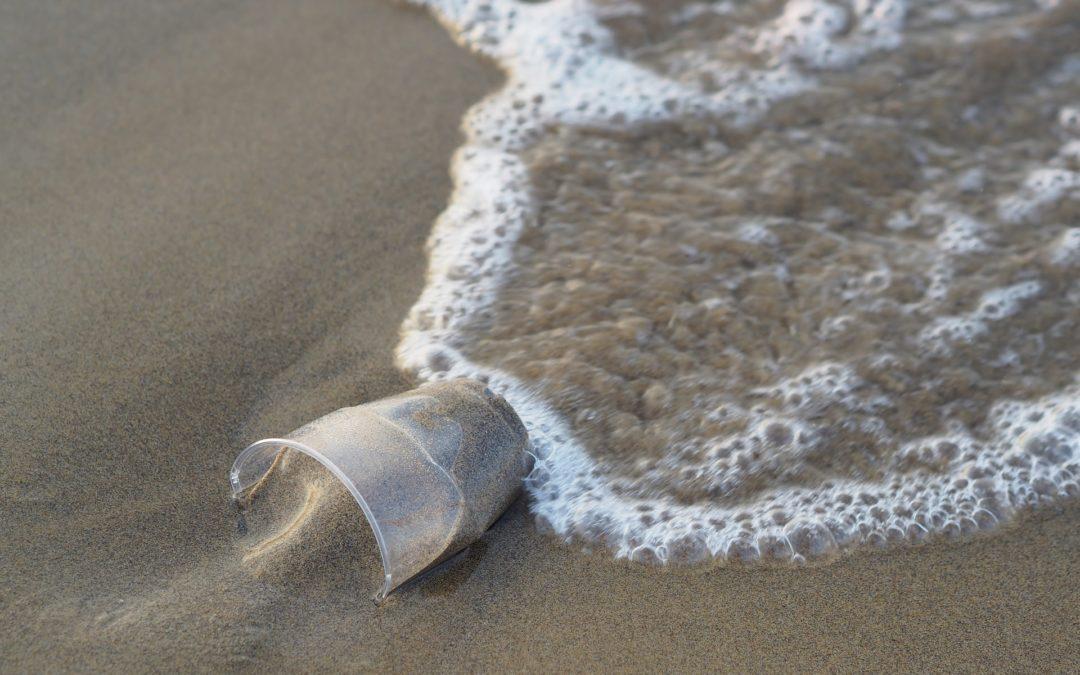 Darmstadt: gemeinsamer Filmabend – A Plastic Ocean