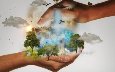 Pressemitteilung: Wie Religionen die biologische Vielfalt feiern